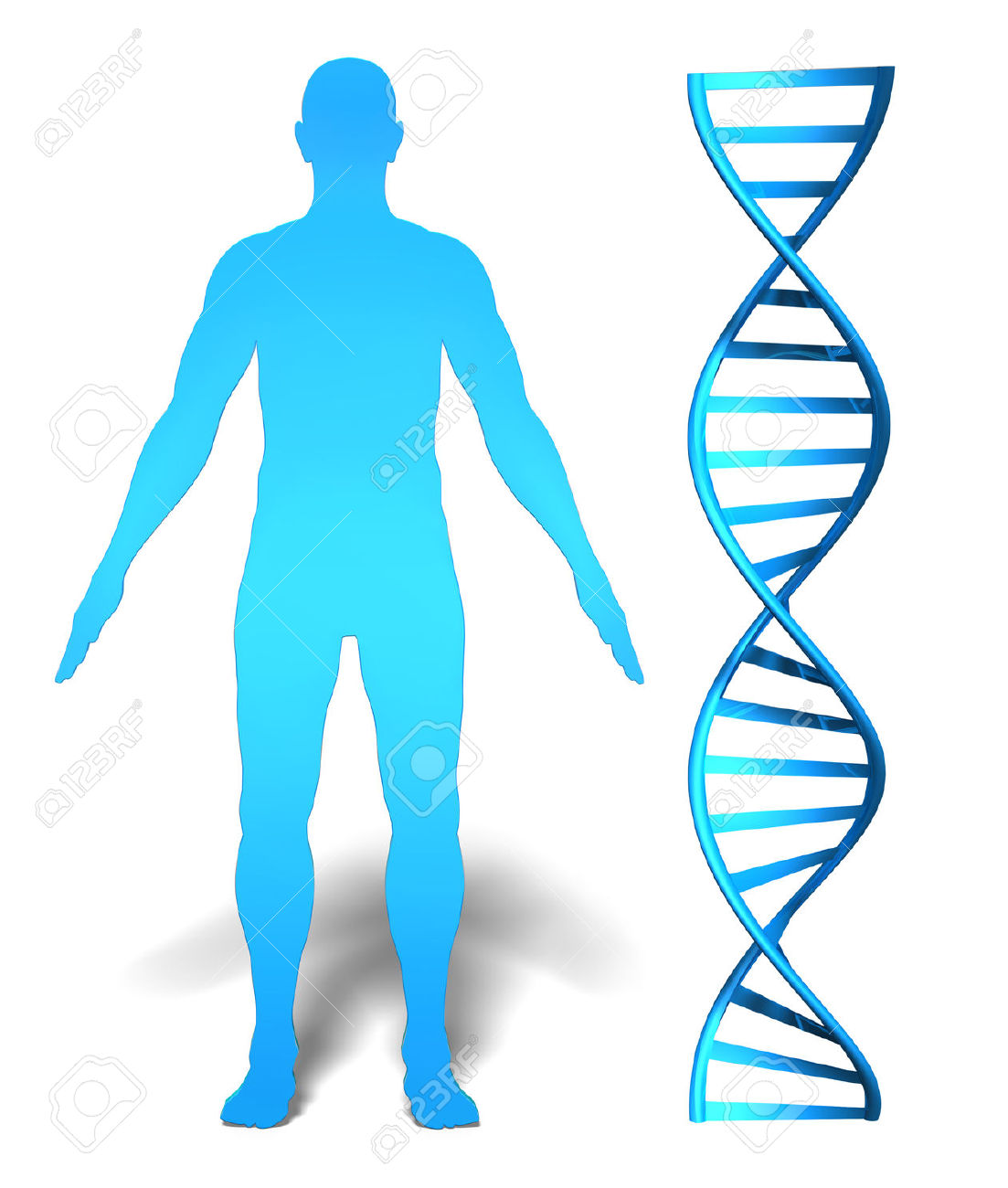 Human Gene Research And Genetic Information Concept Featuring.