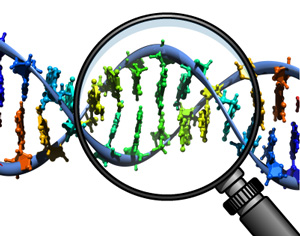 Genetic Testing, Privacy and Discrimination.