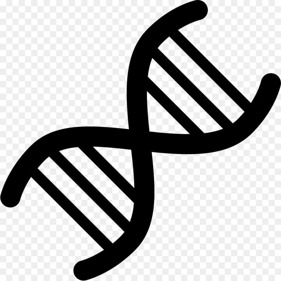 Double Helix png download.