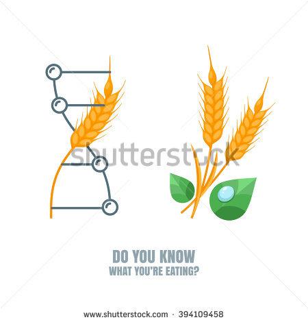Genetically Modified Crops Stock Vectors & Vector Clip Art.