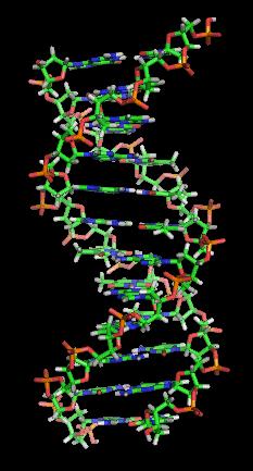 Genetics Animated Clipart.