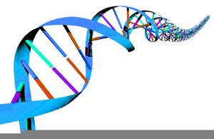 Free Clipart Genetics.