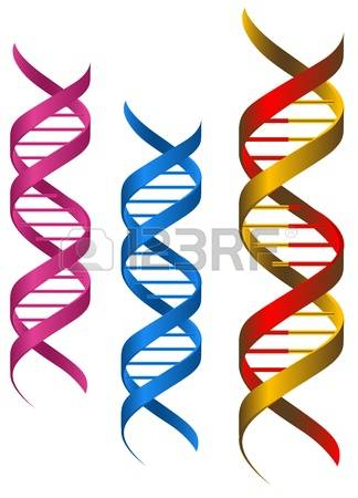 9,333 Genome Cliparts, Stock Vector And Royalty Free Genome.
