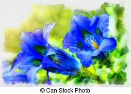 Gentiana Clipart and Stock Illustrations. 10 Gentiana vector EPS.