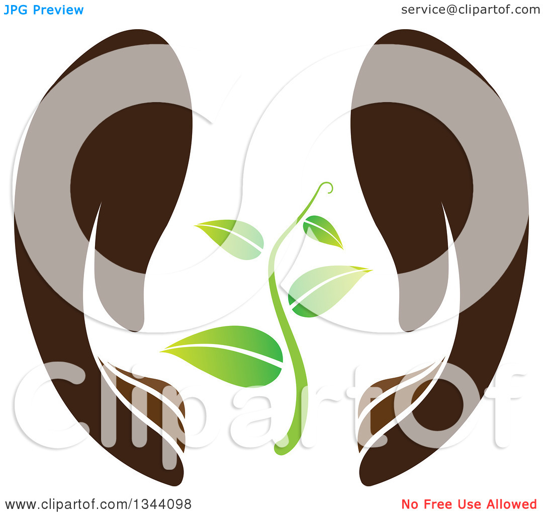 Clipart of a Pair of Gentle Brown Hands Protecting a Seedling.