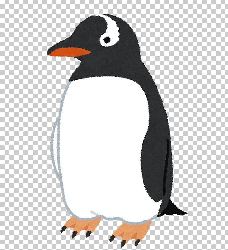 Adélie Penguin Bird Gentoo Penguin King Penguin PNG, Clipart.