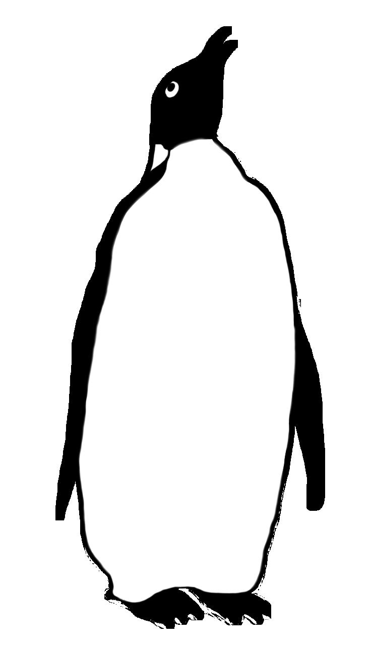 Penguin clipart gentoo penguin, Penguin gentoo penguin.