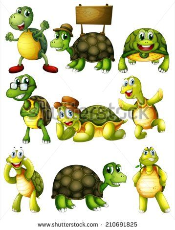 1000+ images about Turtle and Pisces Stuff on Pinterest.