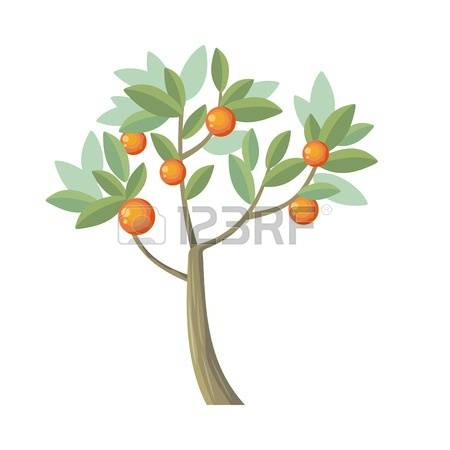 1,192 Genus Stock Vector Illustration And Royalty Free Genus Clipart.