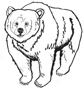 Grizzly Indian Attack George Catlin Clip Art Download.