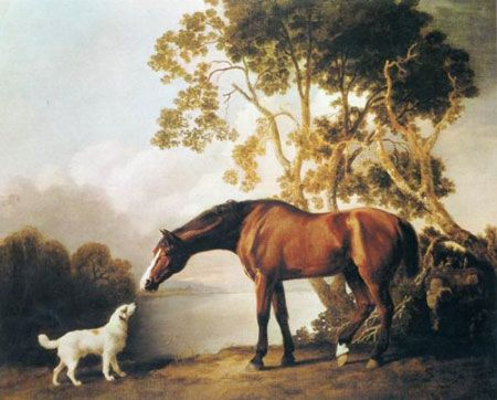 1000+ images about George Stubbs on Pinterest.