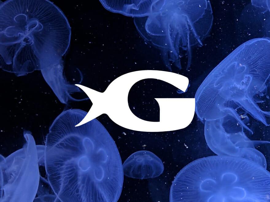 Georgia Aquarium Visit Today.
