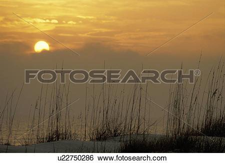 Stock Images of sunrise, sunset, Cumberland Island, Georgia.