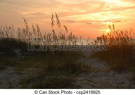Stock Images of sunrise on the beach at tybee island georgia on.