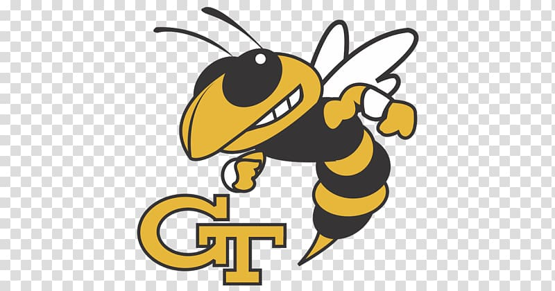 Georgia Institute of Technology Georgia Tech Yellow Jackets.
