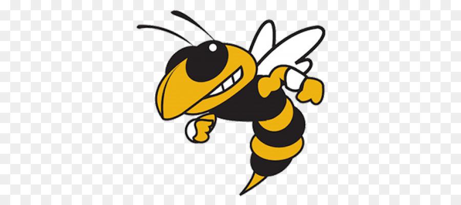 Bee Cartoon png download.