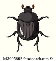 Geotrupidae Clip Art and Illustration. 31 geotrupidae clipart.