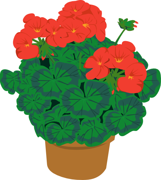 Geranium In Pot Clip Art at Clker.com.