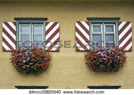"Stock Photography of ""Windows with shutters and flowering."