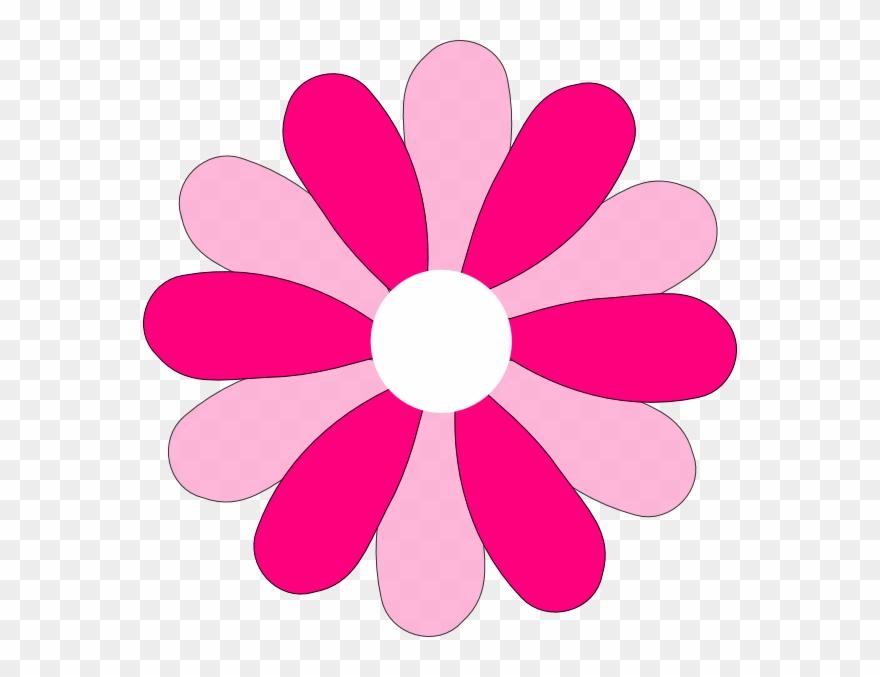 Gerber Daisy Flower Clipart.