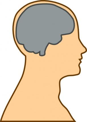 Clipart Gehirn.