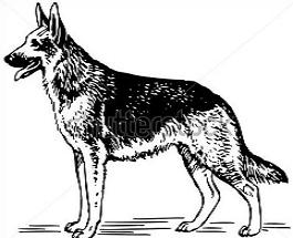Free German Shepherd Clipart.