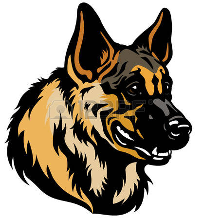 2,242 German Shepherd Stock Illustrations, Cliparts And Royalty.