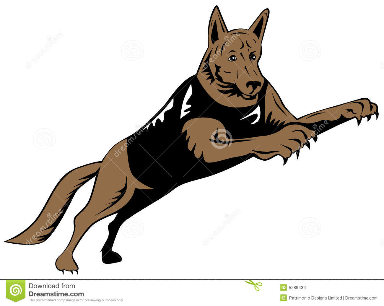 Police Dog Jumping Stock Images.