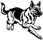 German shepherd Clipart Royalty Free. 614 german shepherd clip art.