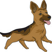 German shepherd Clipart Royalty Free. 577 german shepherd clip art.