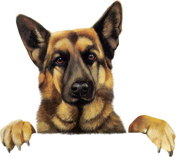 german shepherd clipart. actual site does not exsist anymore.