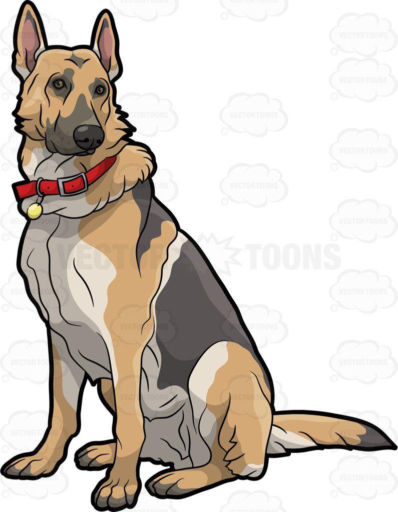 A German Shepherd pet dog #cartoon #clipart #vector.