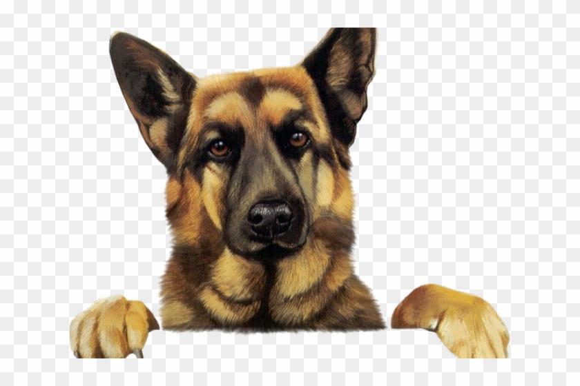 Clip Art German Shepherd, HD Png Download.
