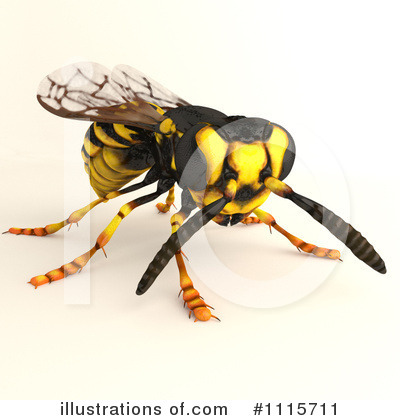 Wasp Clipart.