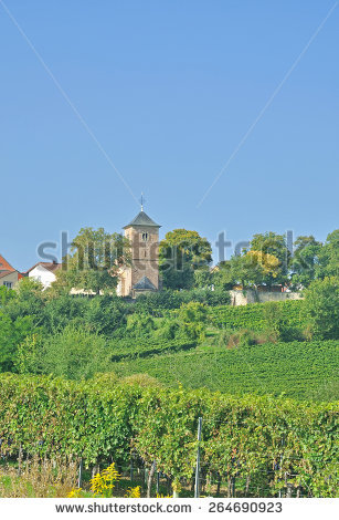 German Wine Route Stock Photos, Royalty.