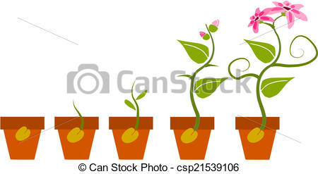 Germination Illustrations and Clipart. 602 Germination royalty.