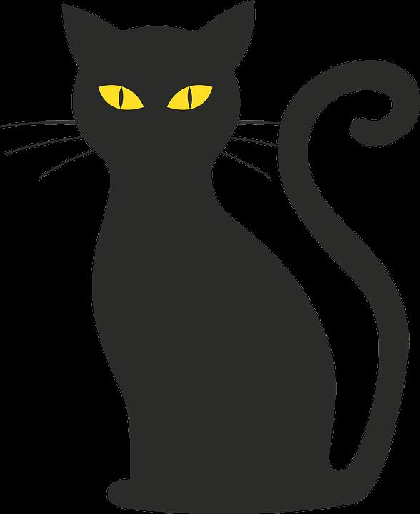 Cat, Silhouette.