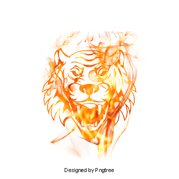 Fire PNG Images, Download 8,721 Fire PNG Resources with Transparent.