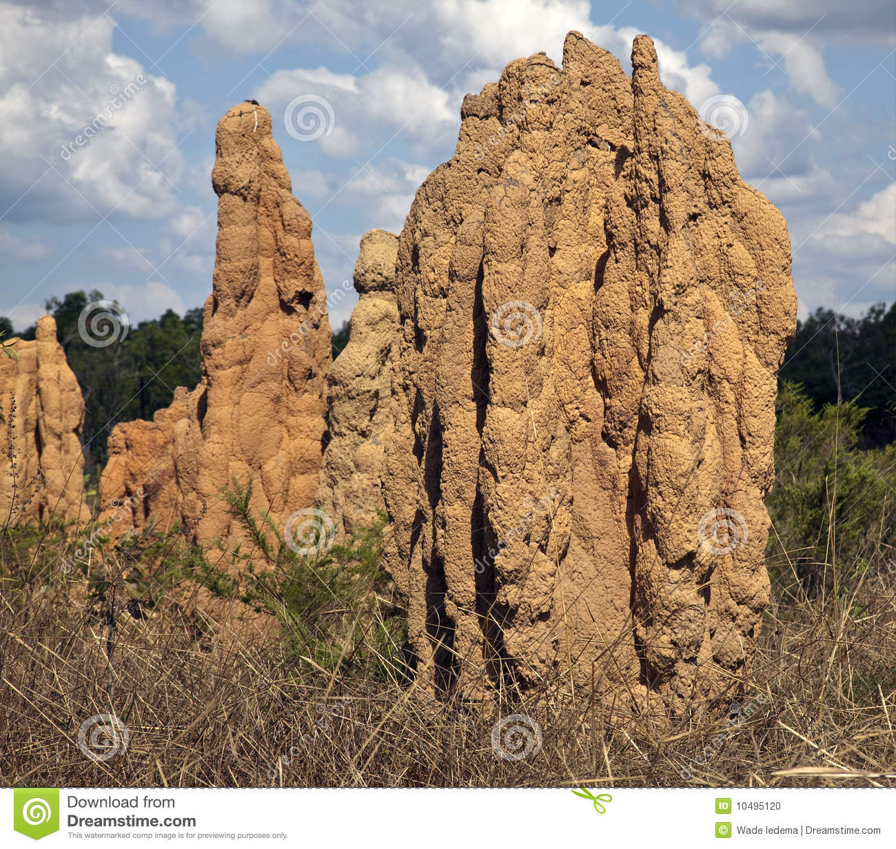 Giant Termite Mounds,Ant Hills, Northern Territory Stock Photo.