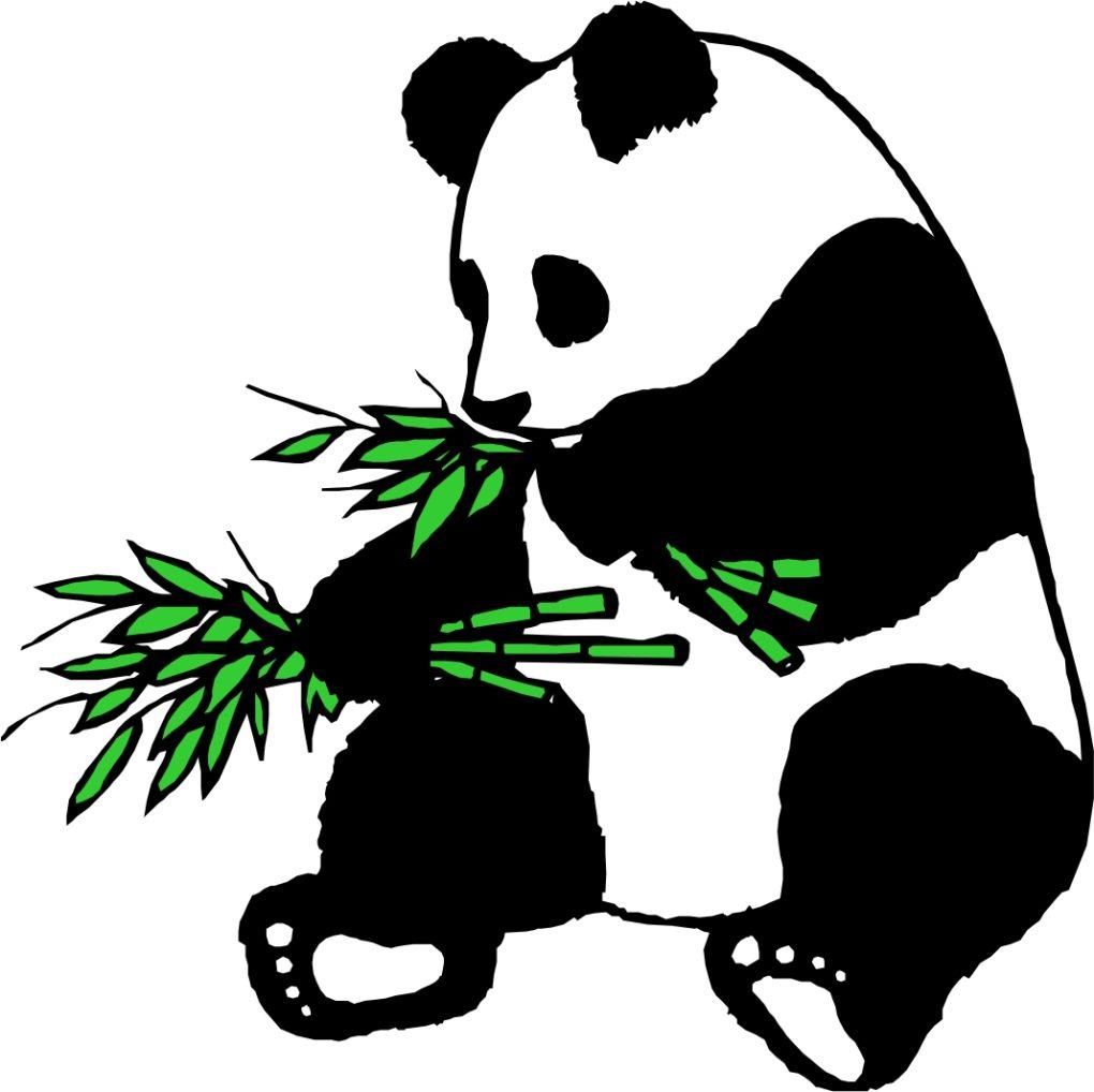 Panda clipart kid bamboo.
