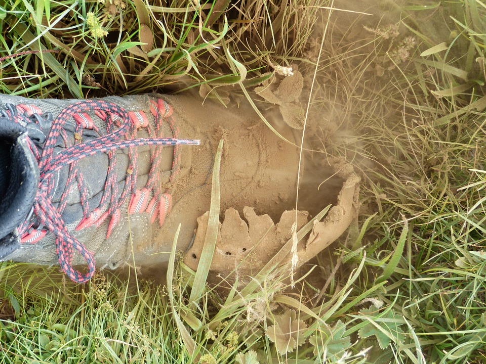 Free photo Dust Mountain Shoe Crush Bovist Mushroom Spores.