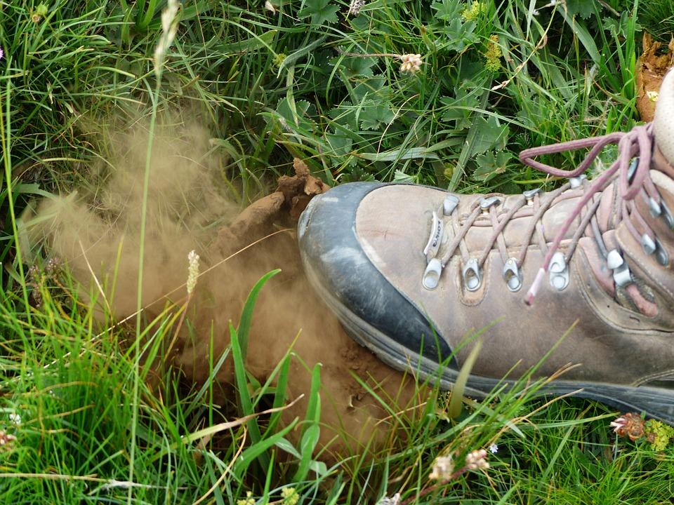 Free photo: Bovist, Mushroom, Dust, Crush.