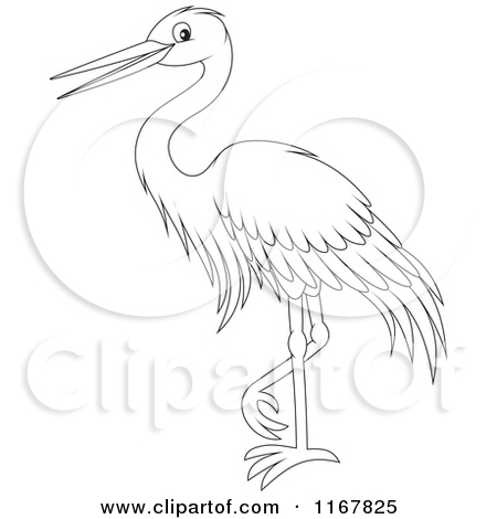 Cartoon of a Standing Outlined Heron or Egret.