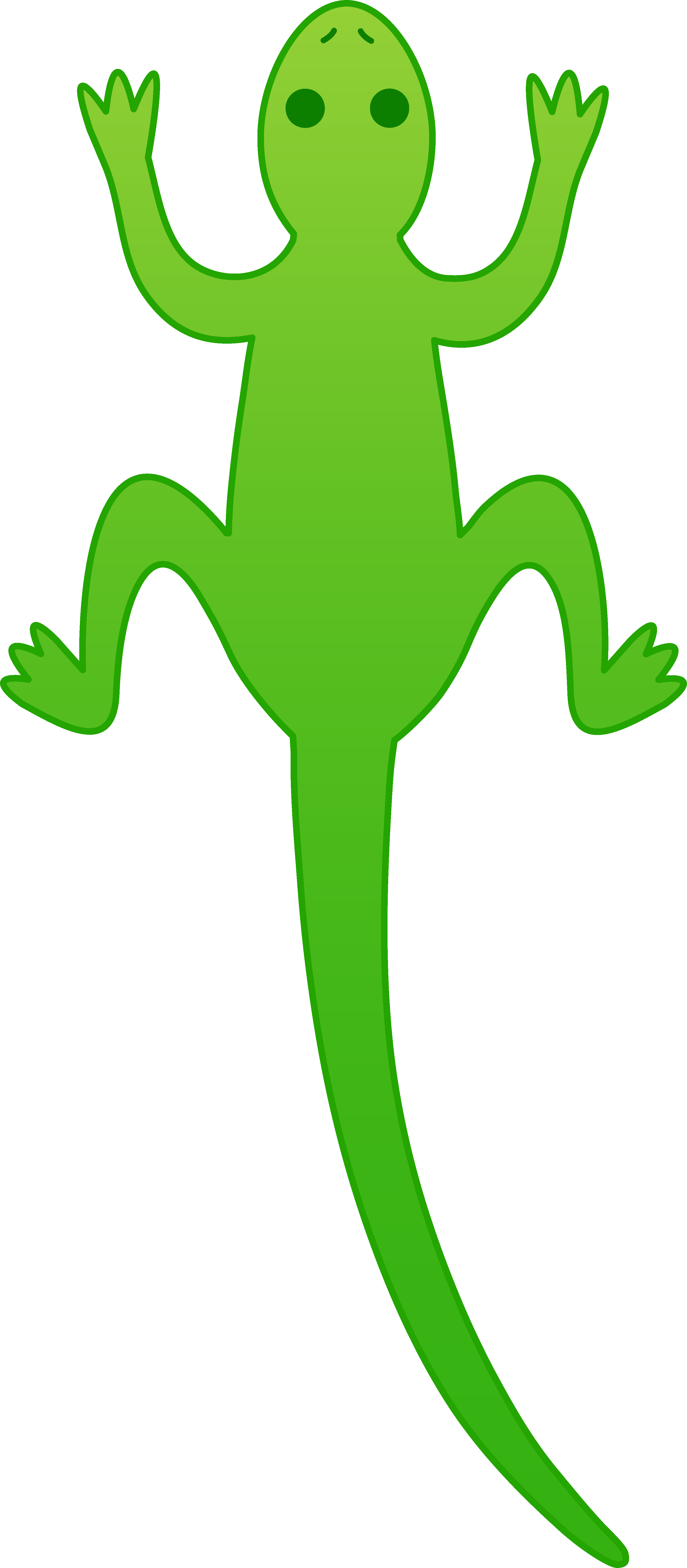 Frogs Images.
