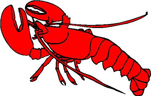Lobster clipart vector.