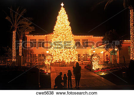 Pictures of Giant Christmas tree brightly lit at private residence.