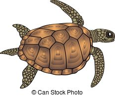 Turtles Illustrations and Clip Art. 8,691 Turtles royalty free.