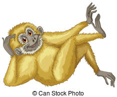 Gibbon Illustrations and Clipart. 617 Gibbon royalty free.