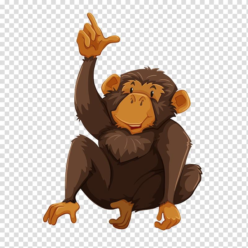Gorilla, Chimpanzee, Monkey, Gibbon, Spider Monkey, Common.