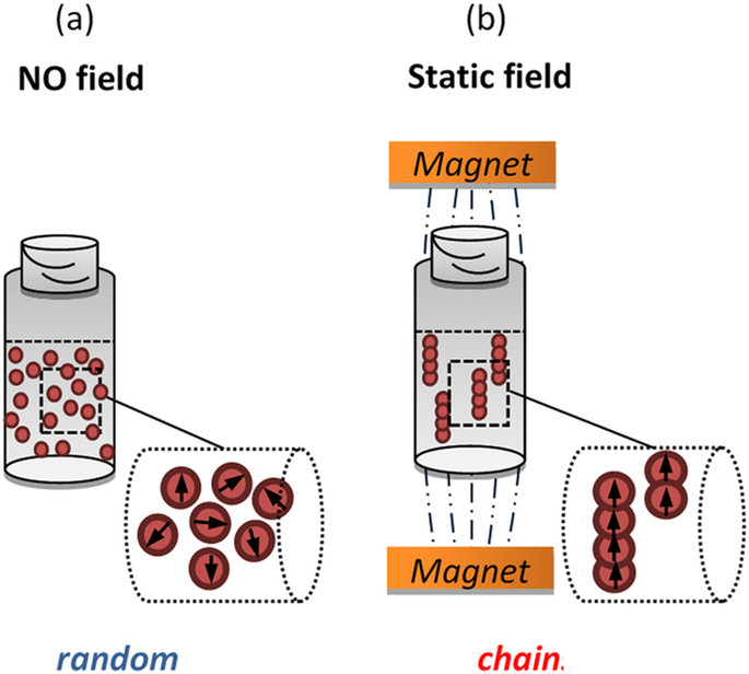 Arrangement at the nanoscale: Effect on magnetic particle.
